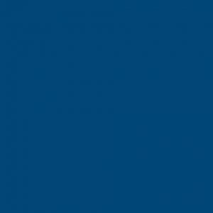 OMNISPORTS R65 BLUE